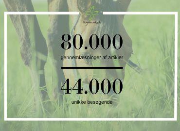 Så mange læser indholdet på Uanvendelig.dk